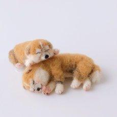 画像1: 【羊毛マスコット】秋田犬 (1)
